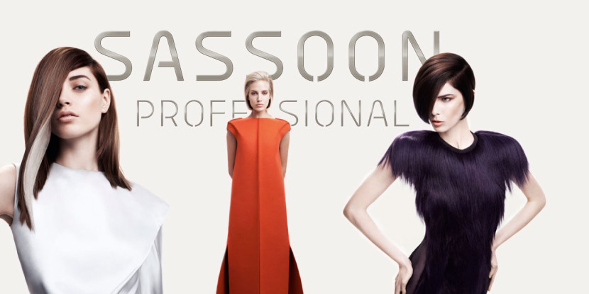 exclusiv in Rosenheim und Südbayern Sassoon professional Bei Louys Balancing Beauty